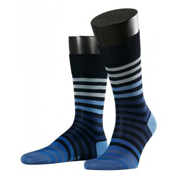 Colour Stripe [Dark Navy]